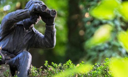 Segnalazione illeciti 2019: appalti, al centro del whistleblowing